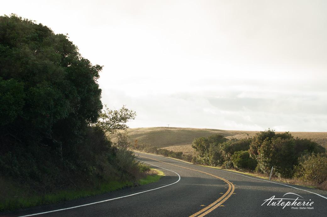 pacific-coast-highway-us-california(5)