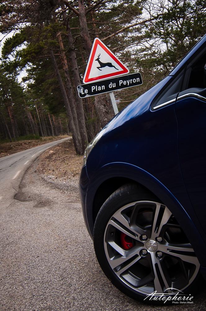 Peugeot_208_GTi_Felge_Schild