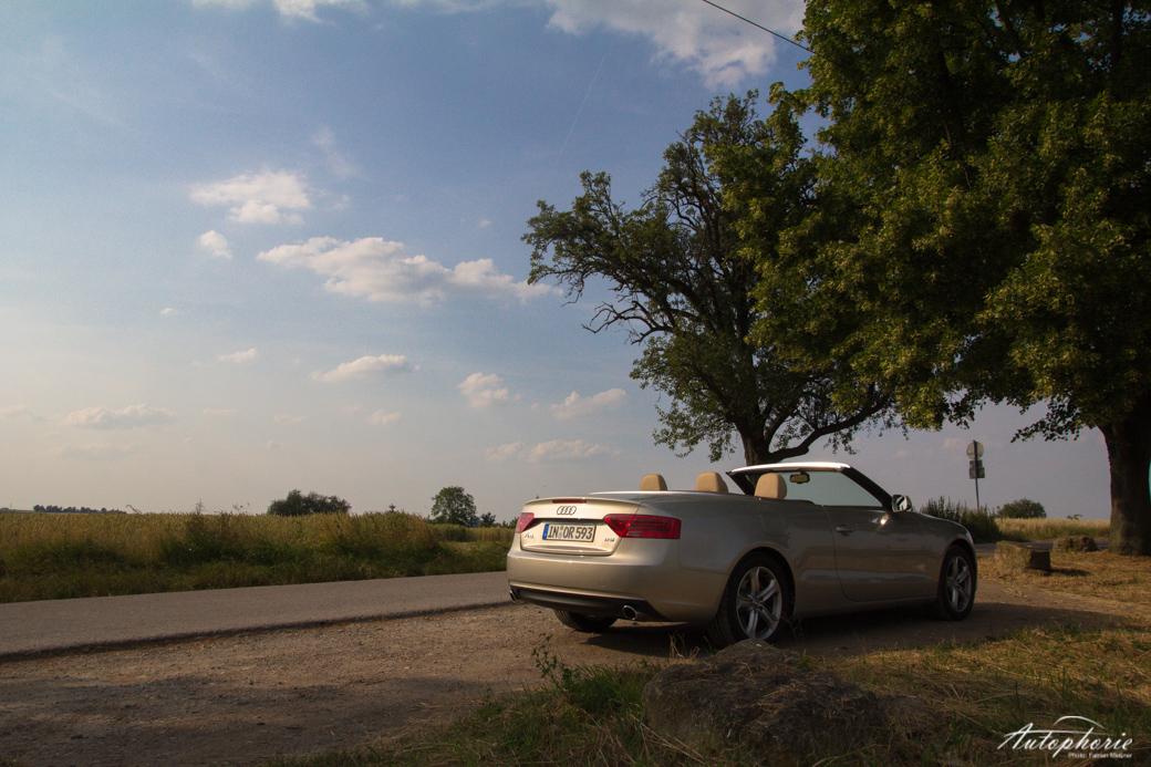 bequemer frischluft-cruiser für vier: audi a5 cabriolet 1.8 tfsi