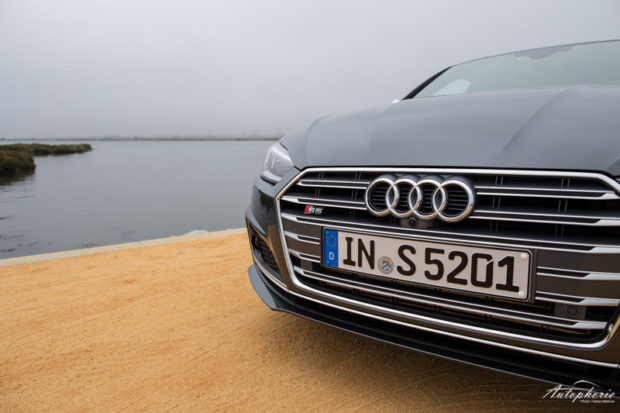 Audi S5 Coupe Grill