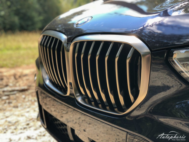 BMW X5 M Sport Paket Niere
