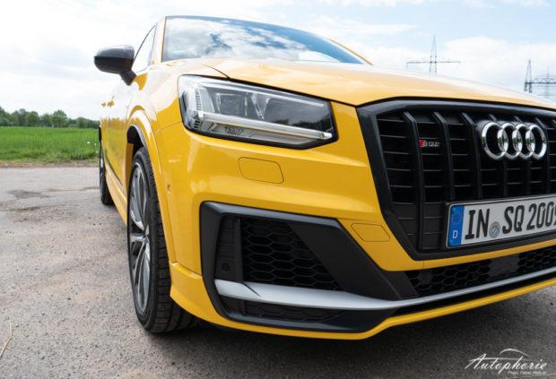 Audi SQ2 Grill