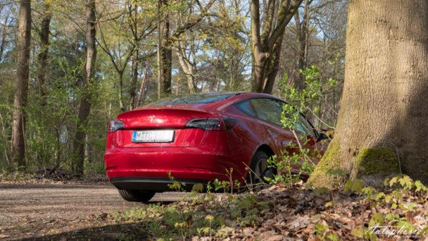 2021 Tesla Model 3 Standard Plus Red Multi Coat Heck